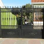 puerta forja con adornos